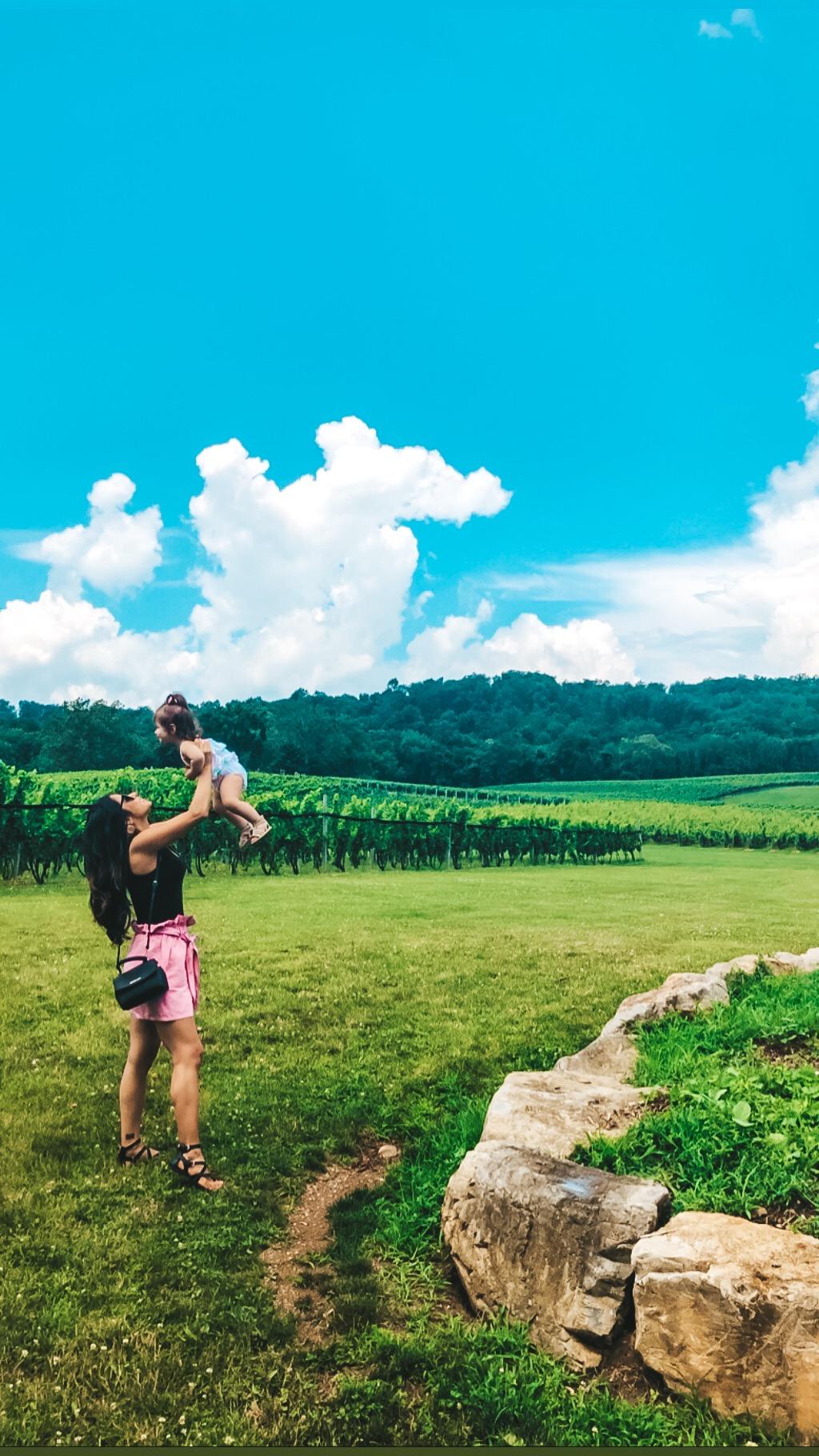Vineyard Day Trip